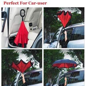 umbrella for car