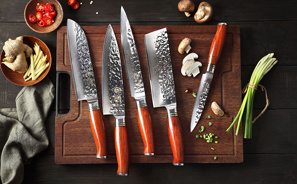 Compra YARENH Cuchillo de Cocina Profesional, Set Cuchillos Cocina de Acero Damasco Japones con 5 Piezas, Mango de Madera Dalbergia, Cuchillos de Chef Marcas Ultra Filoso HTT-Serie en Amazon.es
