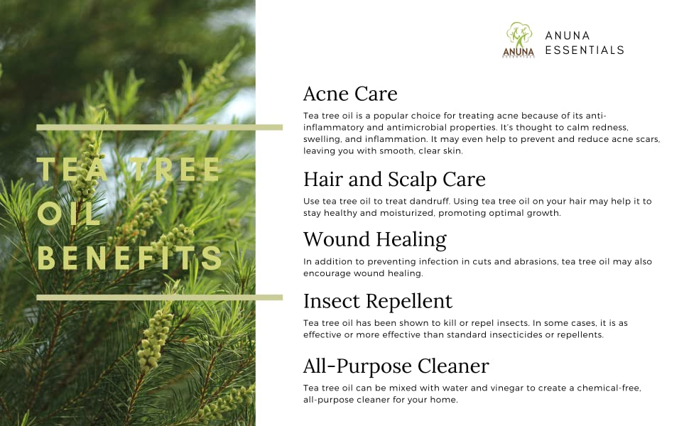Benefits tea tree Oil acne skin care Hair Care insect repellent