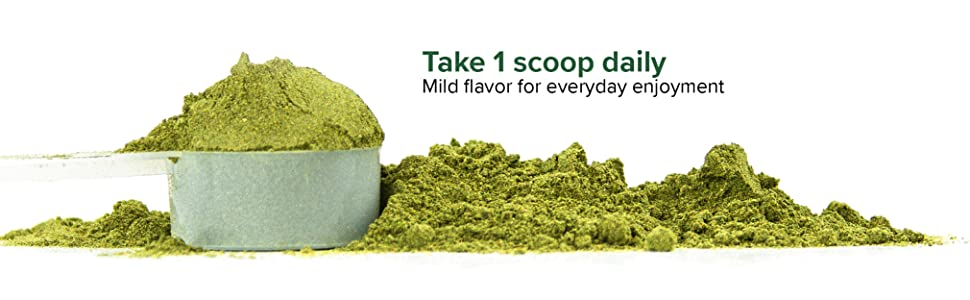 1 scoop daily