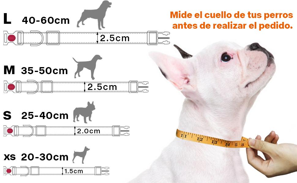 Taglory Collar Perro, Collar Nylon Reflectante Neopreno Forrado Ajustable para Perros Grandes, Rojo: Amazon.es: Productos para mascotas
