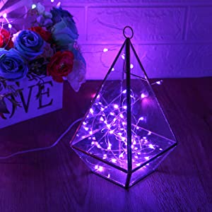 string lights purple
