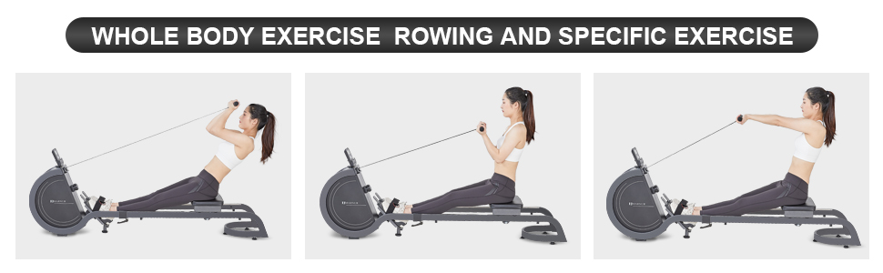Whole body exercise rowing and specific exercise