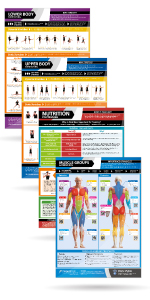 Muscle Building Exercises & Body Conditioning Fitness Posters