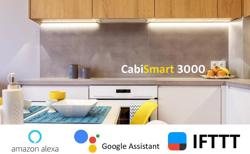 CabiSmart 3000
