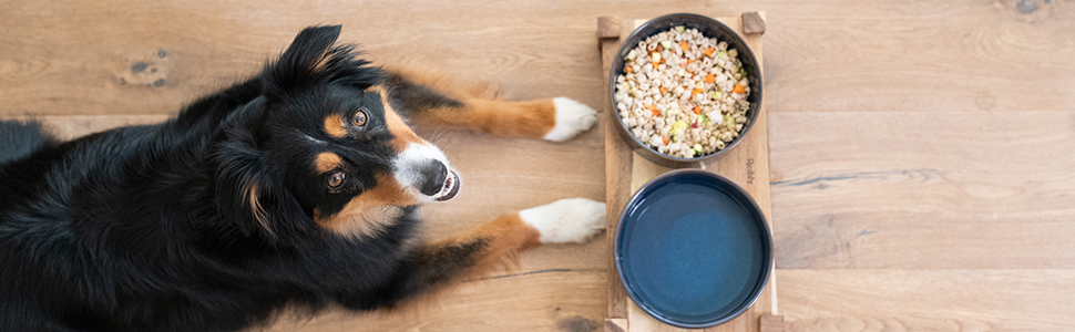 PantryFresh whole fresh dog food for puppies and adults