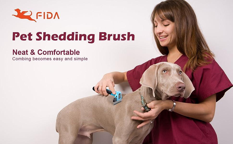 dog shedding tool