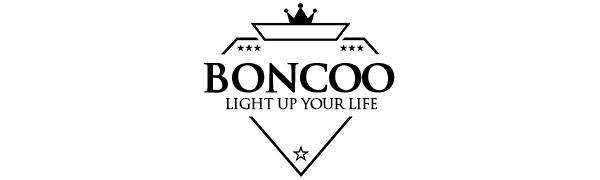 boncoo ceiling light