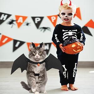 A boy with a cat bat