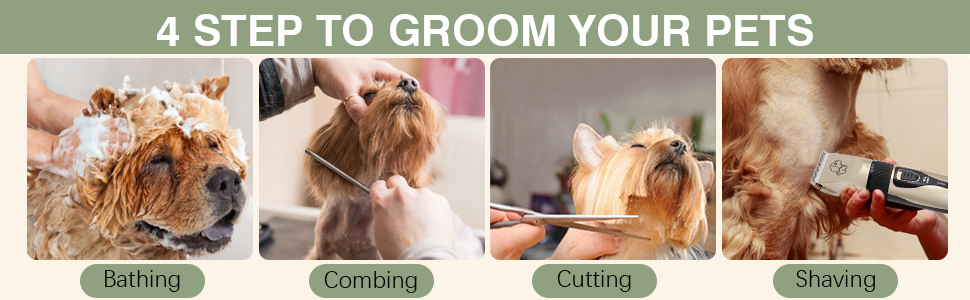 groom your pet
