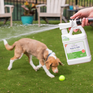 wondercide flea tick ready to use yard and garden mosquito spray dog cat puppy