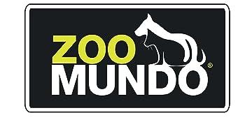 zoomundo logo