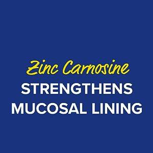 Zinc carnosine strengthens mucosal lining