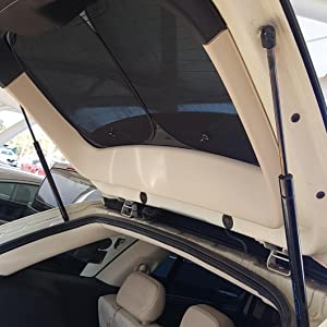 Rear Trunk Lift Supports Fits Ford Police Interceptor Sedan Taurus Shocks 2 pc