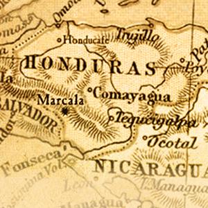 Subtle Earth Organci Coffee Beans Honduras Central America