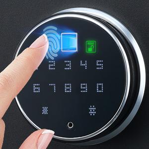 semiconductor biometric fingerprint