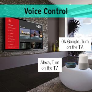 Voice Control