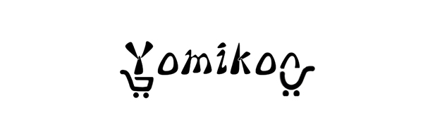 Yomikoo aux adapter