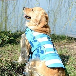 dog life jacket small