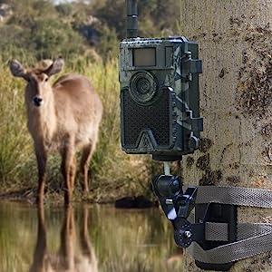 4g cellular wildlife cam