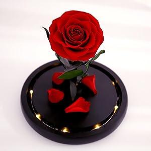 real rose
