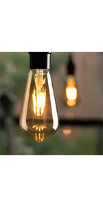 led edison bulbs