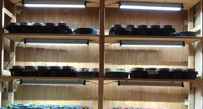 Expand Grow Light, Daisy Chain, Connect multiple units, LED Grow Light Hydroponics Indoor garden