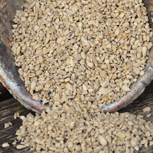 raw hulled sunflower seeds