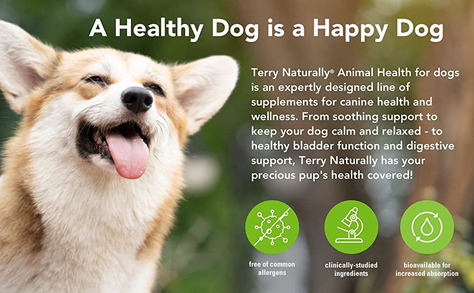 canine health, dog health, wellness, calm dog, calming supplements, bladder supplements for dogs