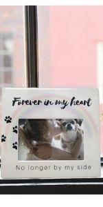 paw prints heart memory remembrance dog