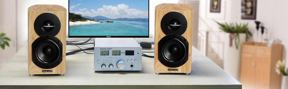 Summer Audio Passive Speaker