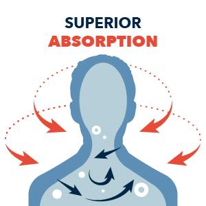 Superior Absorption
