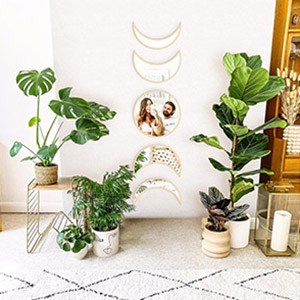 decorative mirrors for entryway