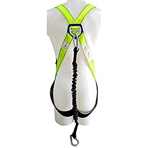 harness with lanyard