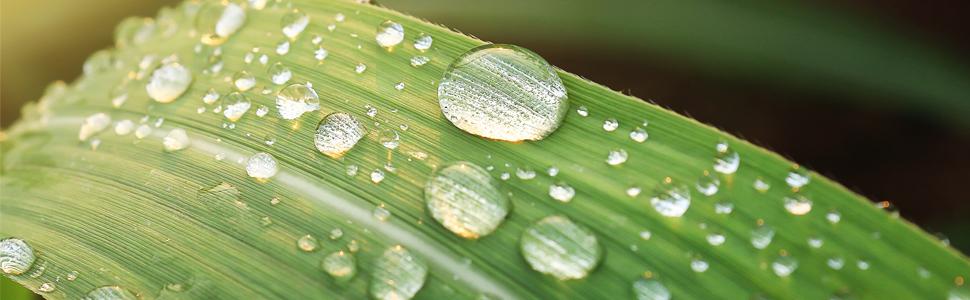 Surfactant, Liquid Harvest Surfactant, Liquid Harvest, sticking agent