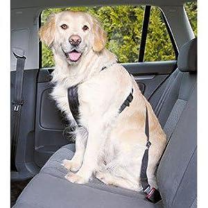 UPDOG Cinturón de Seguridad para Perros para el Coche Universal ...