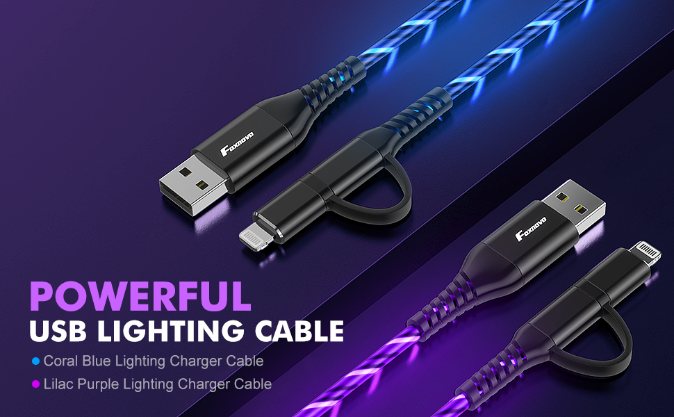 Transfer Cord for iPhone