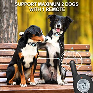 Support Maximum 2 Dogs with 1 Remote