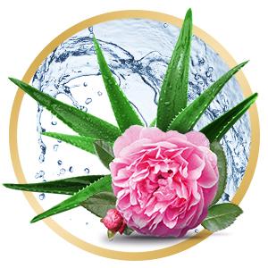Anti Aging Beauty Aloe Vera Juice