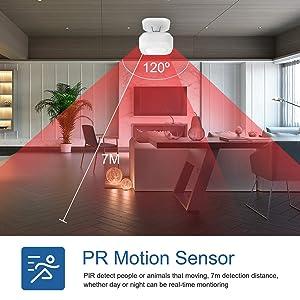 PIR Detection