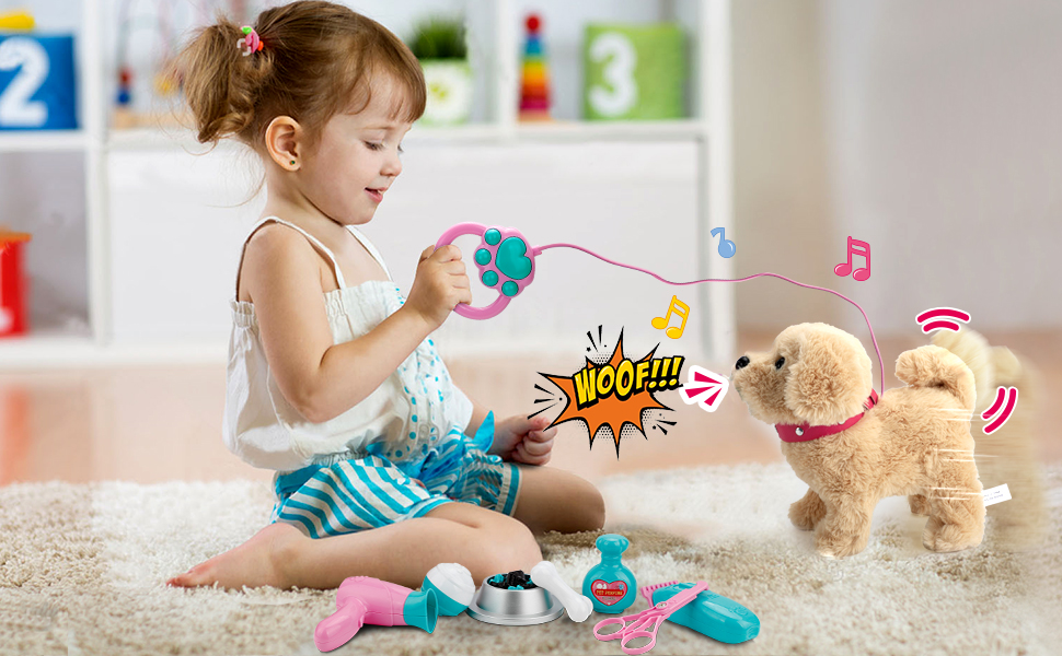 Electronic Interactive Toy