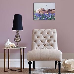 Serendipity III التدريج ديكور المنزل غرفة الجلوس الحديثة الحديثة ديكور