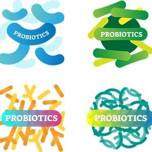 illustrations of probiotics