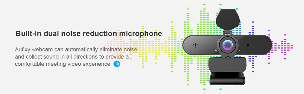 dual mic  webcam