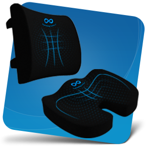 back and seat cushion combo