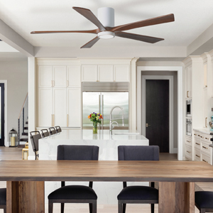 ceilin fan with light, kitchen, dining room