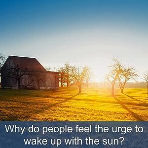 wake up with sunrise