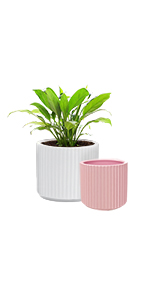 """GrowLED Ceramic Plant Pot 6"""" and 5"""", Rome Series, Matte White amp; Pink"""