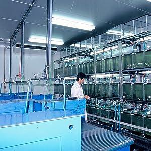Hikari Lab
