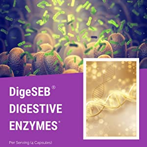 digestive enzymes blend supplement ultra prebiotic probiotic amylase lipase protease lactase gut
